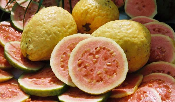 Guava from Fine Fruits Club