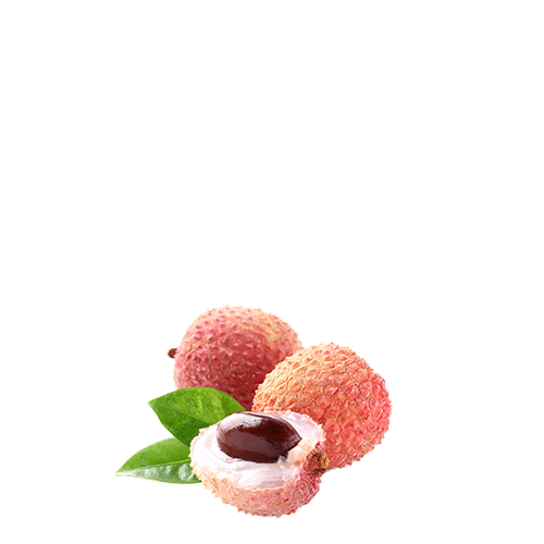 Lychee fruit puree- Lychee puree - Fine Fruits Club