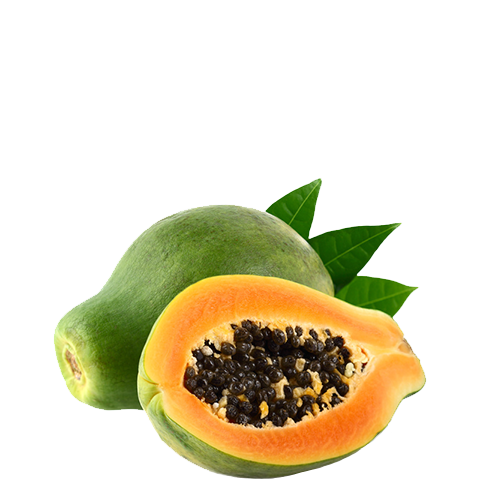 Papaya Fruchtpüree - Papaya Püree - Fine Fruits Club
