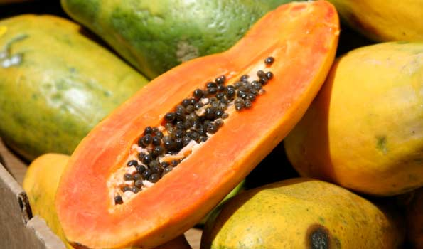 Papaya from Fine Fruits Club